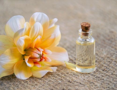 Jasmine Essential Oil: What Are The Health & Lifestyle Benefits