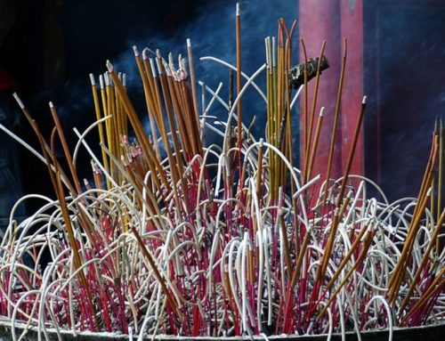 Natural Secret Garden Incense Sticks, Concentrate More