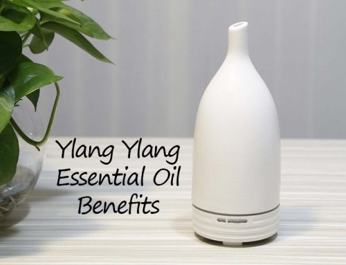 Ylang Ylang Essential Oil and All the Healthy Benefits